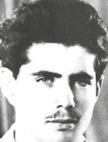 """רב""""ט אהרן רוני פישביין"""